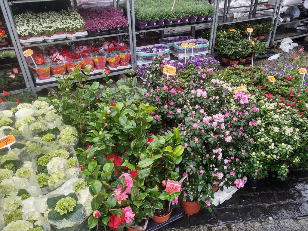 Blumenmarkt am Karfreitag